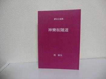 神樂坂隧道1.JPG